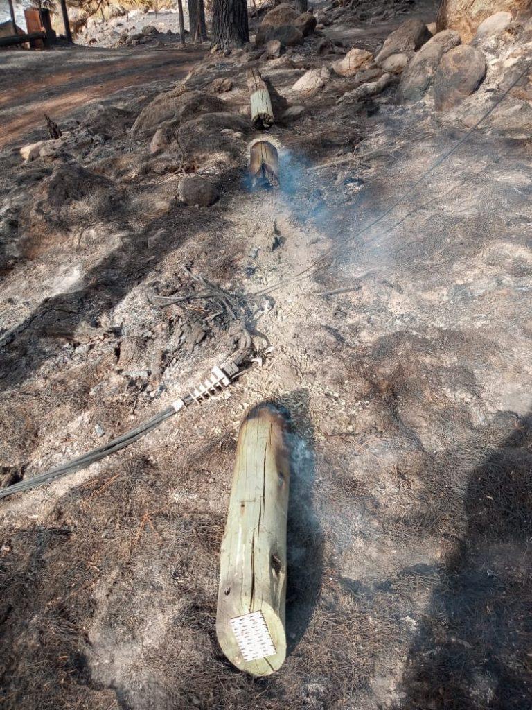 Pérdidas incendio Los Marianos Cooperativa La Cumbrecita
